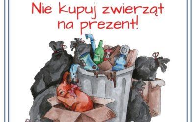 Zwierzę to nie prezent- adopcje wstrzymane do końca roku
